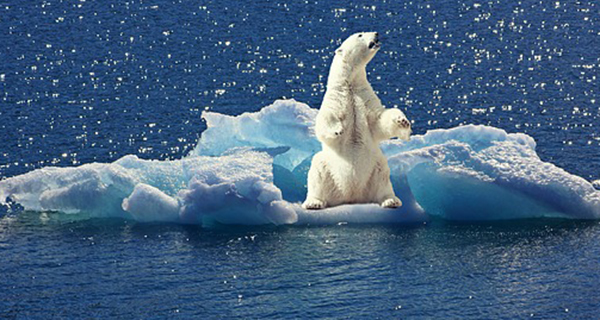 The clear and present danger of climate change