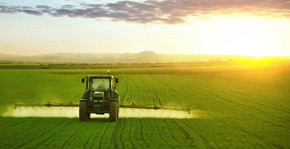 Canadian agriculture outlook uncertain: TD