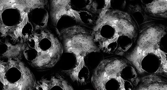 The Black Death and its aftermath
