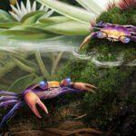 Artist's reconstruction Cretapsara athanata crab wildlife nature